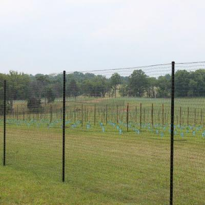 Cattle Fence Installation In Alabama